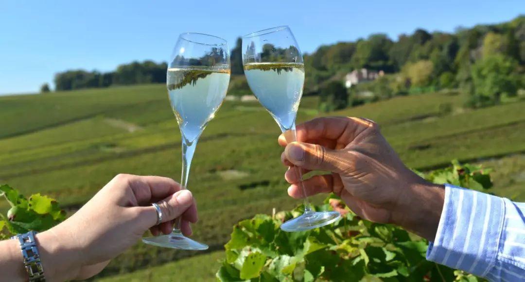 波尔多葡萄酒只知道拉菲?看看2021年最值得入手的十瓶佳酿!